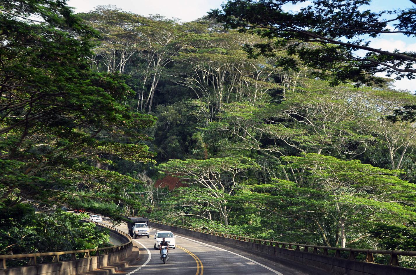 Kalihiwai-Bridge-Kauai