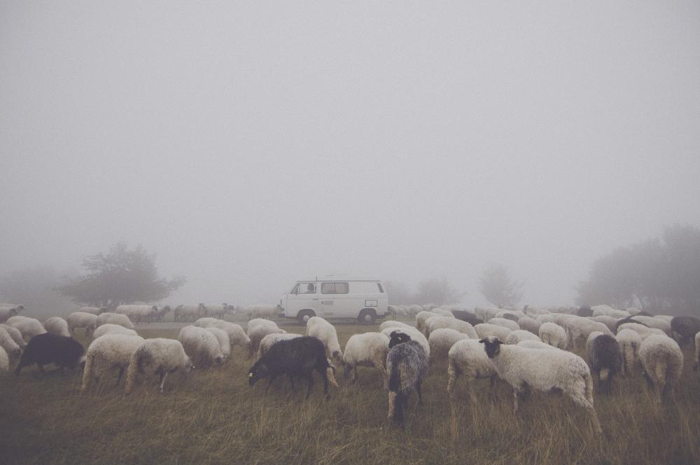 Bosnie Herzegovine ©http://wandering.aeternus.sk/