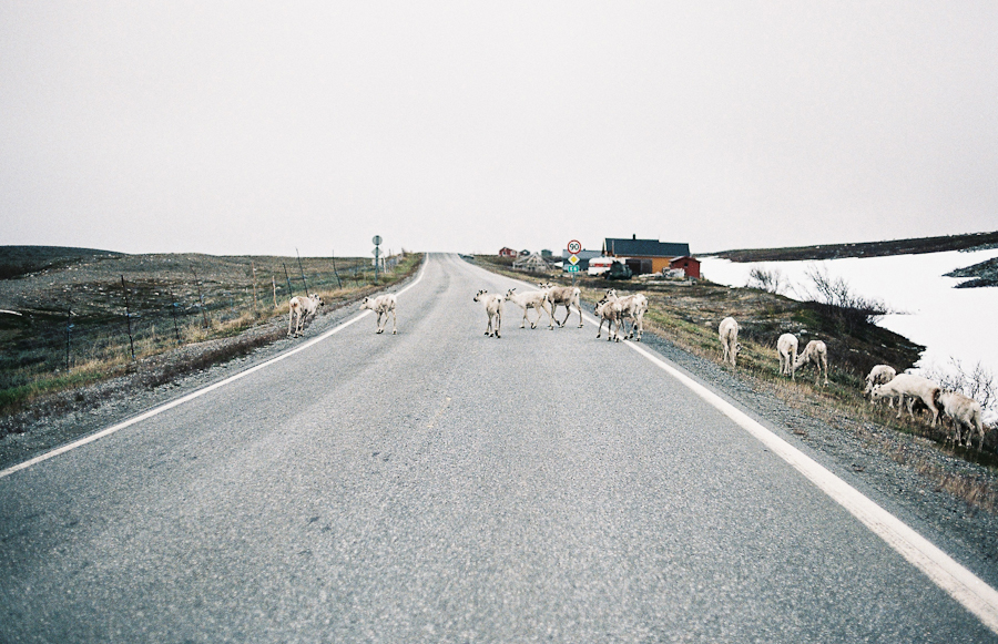 budget-roadtrip-scandinavie-21