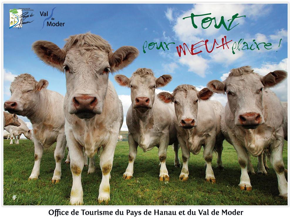 Ces slogans d 39 offices de tourisme qui nous font rire allez giz le - Office du tourisme d aurillac ...